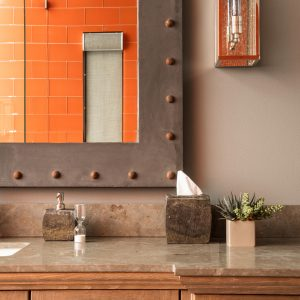 Eagle Preserve childrens bathroom by Brianna Michelle Design