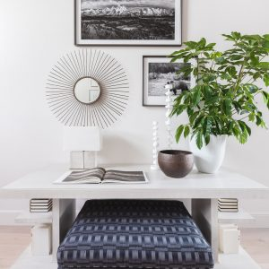 northern frost console table in entryway